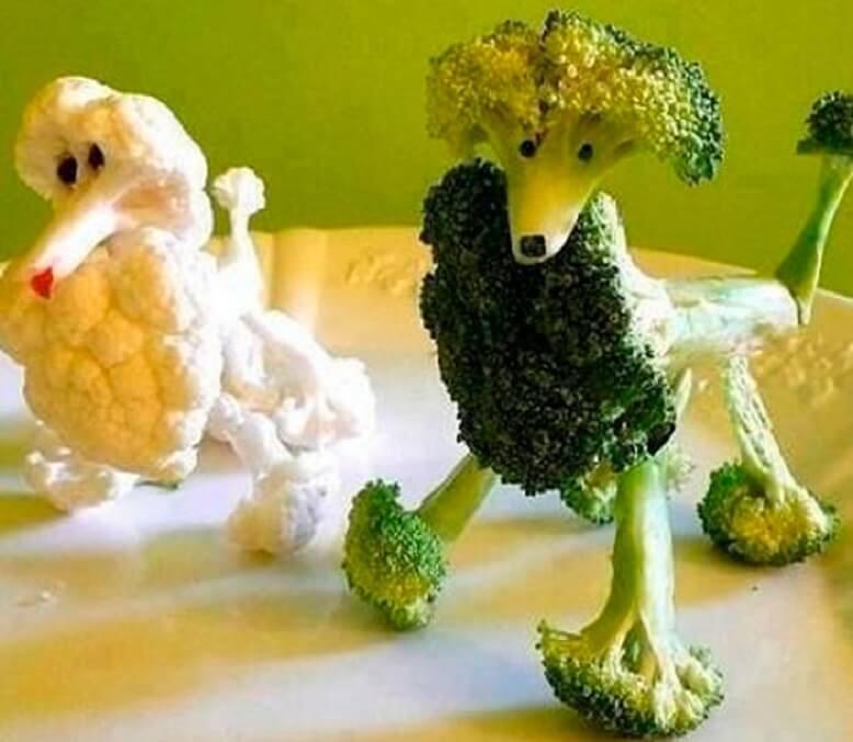 Пудель поделки из цветной капусты и брокколи