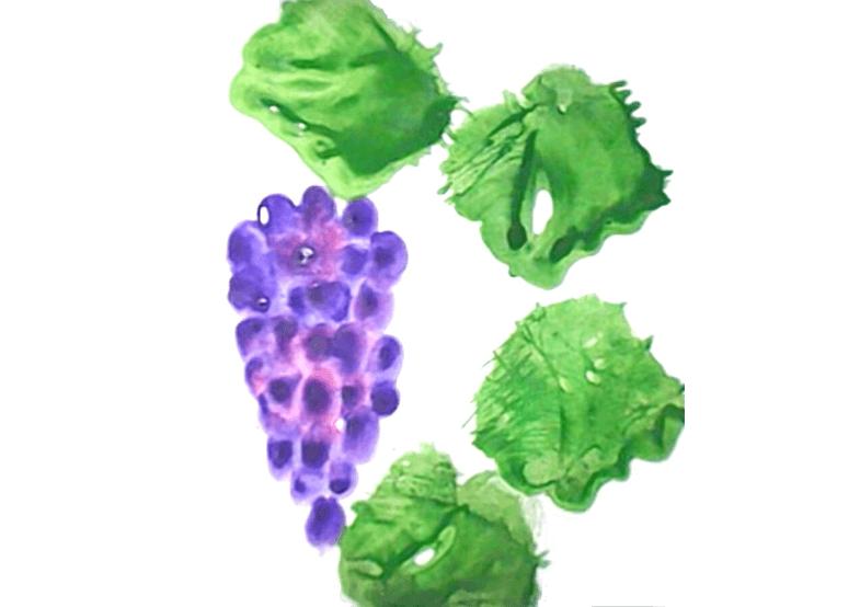 виноград пальчиковое рисование 2