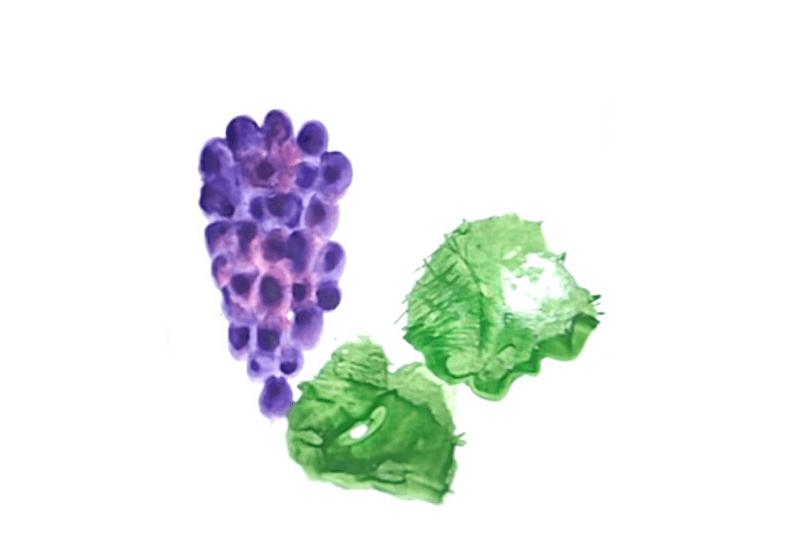виноград пальчиковое рисование